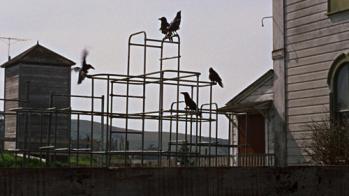 thebirds_2